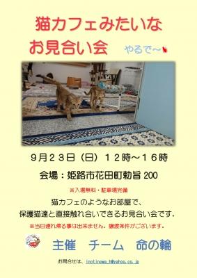 923譲渡会ポスター-コピー