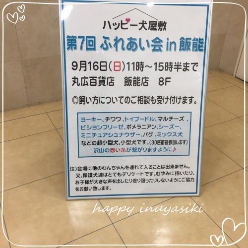 mini2018IMG_4634(1).jpg