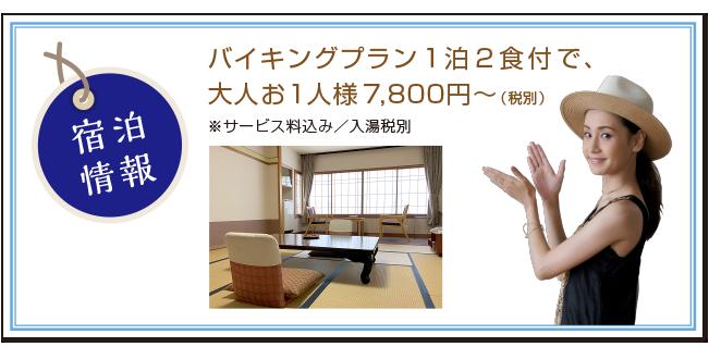 #new7_shukuhakujyouhou