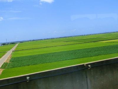 朱鷺からの田園風景