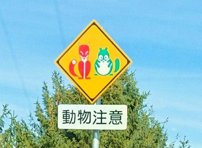 赤いきつねと緑の狸