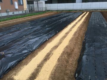 5畝準備12