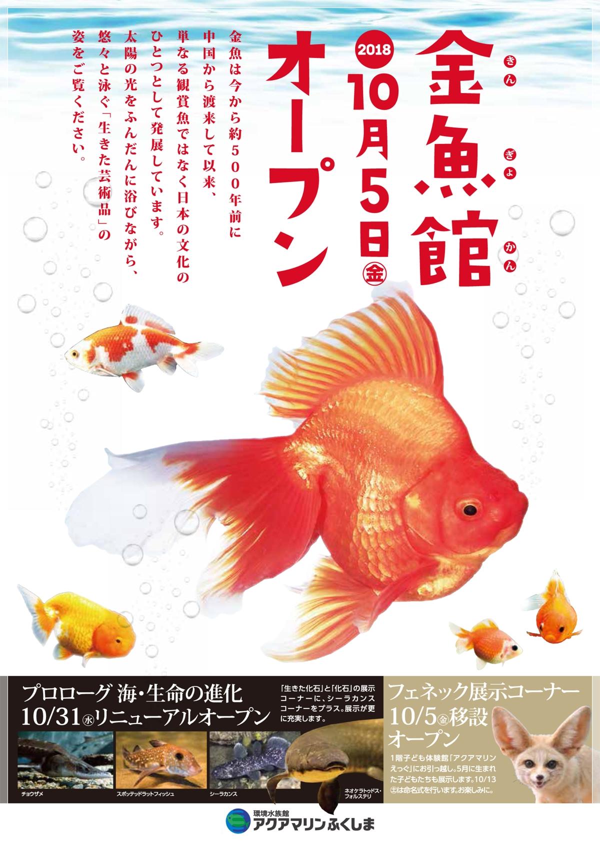 アクアマリンふくしま「金魚館」オープン!! [平成30年10月6日(土)更新]1