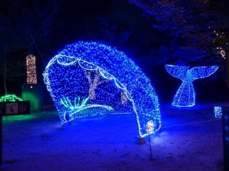 光のおもてなし in 松山城 16