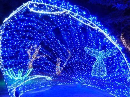 光のおもてなし in 松山城 17