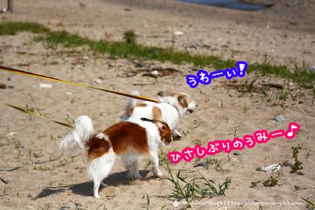 180330_biwako2.jpg