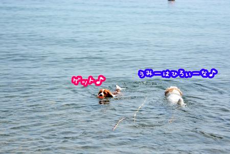 180330_biwako4.jpg