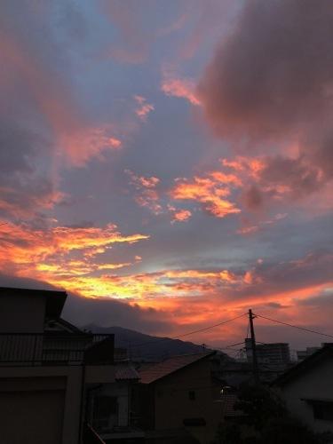 IMG_1718 朝