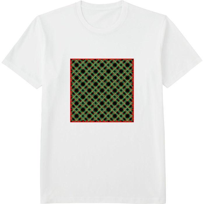 チェック333ヒストグラム_エッジの光彩_エンベロープ‗Tシャツドライカラークルーネック白