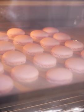 Sakkura-macaron