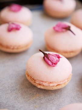 Sakura-macaron-1