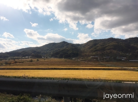 CN-Storyの旅_忠清南道_2018年10月_韓国地方旅行_5