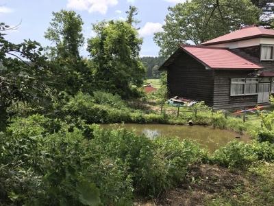 公民館の裏手の池