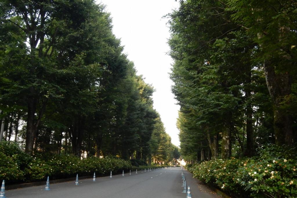 箱根 188