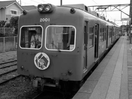 P1000894 (800x600) (2)
