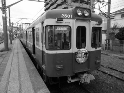 P1000899 (800x600) (2)