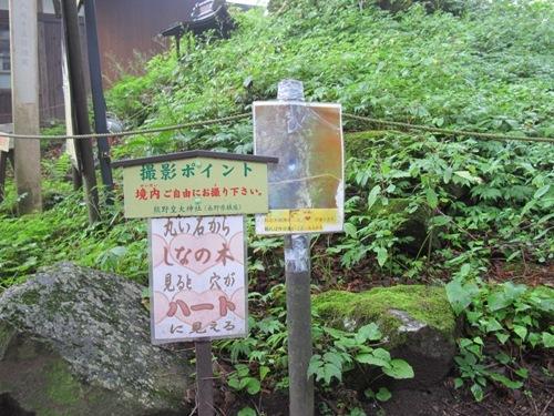 軽井沢 (96)
