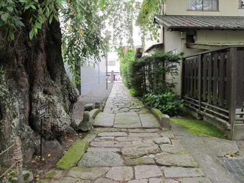 軽井沢 (133)