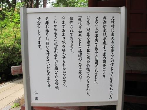 軽井沢 (204)