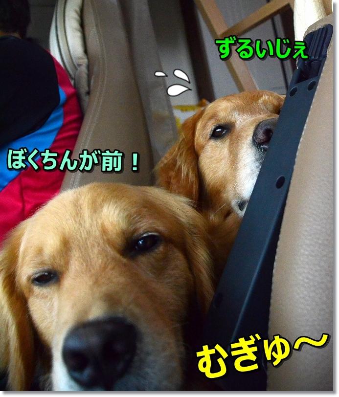 DSC_5753むぎゅh~