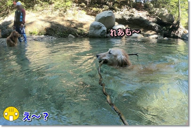 GOPR0578え~?