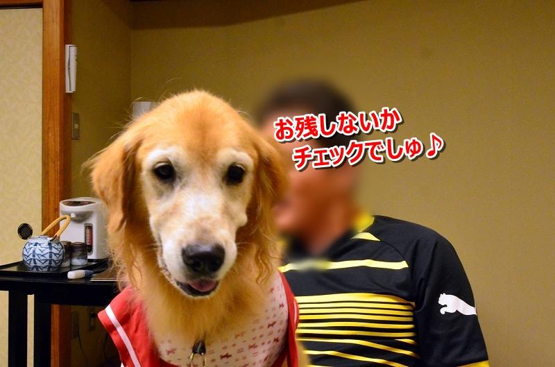 DSC_8126でしゅ