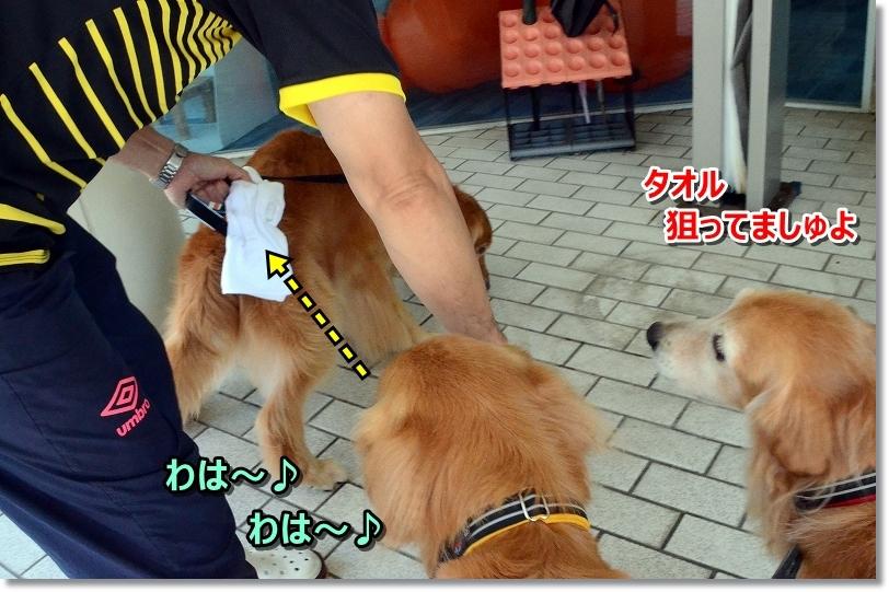 DSC_8257和はっ♪