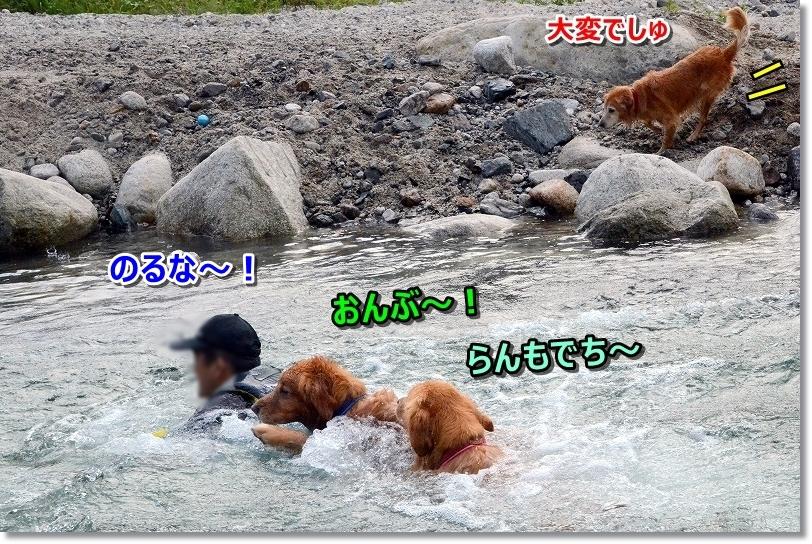 DSC_8513おんぶ~
