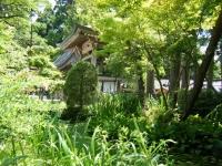 2018-07-14重箱石しろぷーうさぎ・中尊寺ハス祭り100