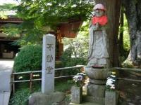 2018-07-14重箱石しろぷーうさぎ・中尊寺ハス祭り106