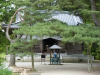 2018-06-30平泉-毛越寺アヤメ祭り-しろぷーうさぎ125
