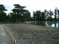 2018-06-30平泉-毛越寺アヤメ祭り-しろぷーうさぎ136