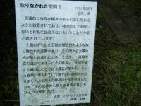 2018-06-16登米市南方花菖蒲の郷-しろぷーうさぎ180
