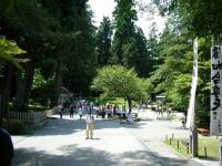2018-07-14重箱石しろぷーうさぎ・中尊寺ハス祭り128