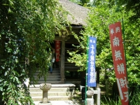 2018-07-14重箱石しろぷーうさぎ・中尊寺ハス祭り139