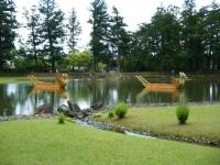 2018-06-30平泉-毛越寺アヤメ祭り-しろぷーうさぎ164