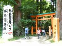 2018-07-14重箱石しろぷーうさぎ・中尊寺ハス祭り156
