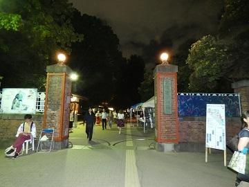 12-4夜の藝大正門