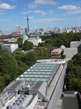 11東京スカイツリー
