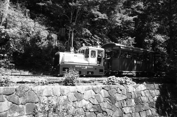 赤沢自然モノクロ06