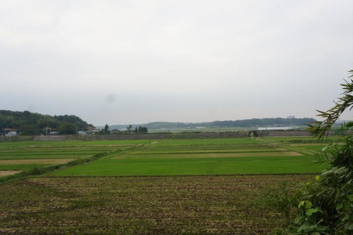 本佐倉城10