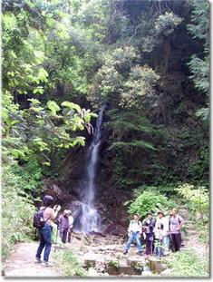 12.5.20櫛羅滝
