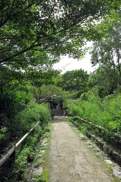 180911浄瑠璃寺