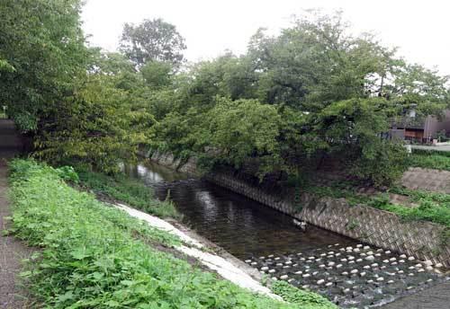 180914川路桜