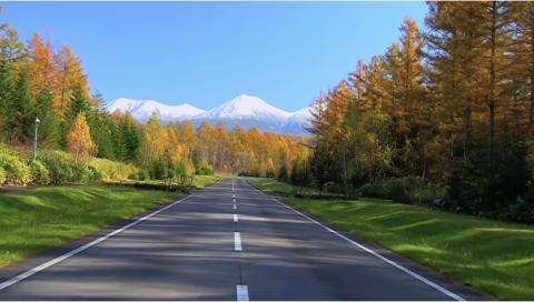 海外「日本にこんな場所があったのか!」 日本にある『世界一美しい道』が海外で話題に