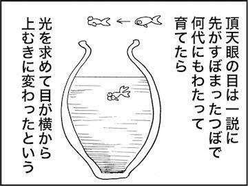 kfc01362-4