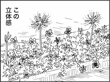 出まかせ園芸 - 海月ファームだより