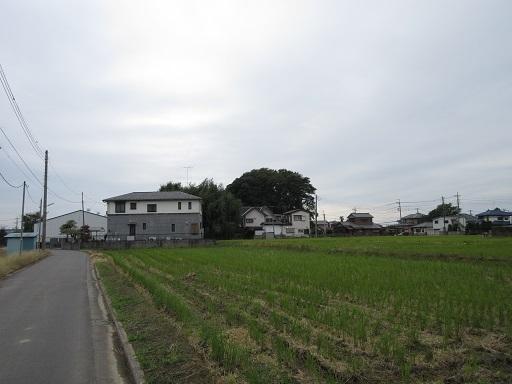 塚山古墳遠景