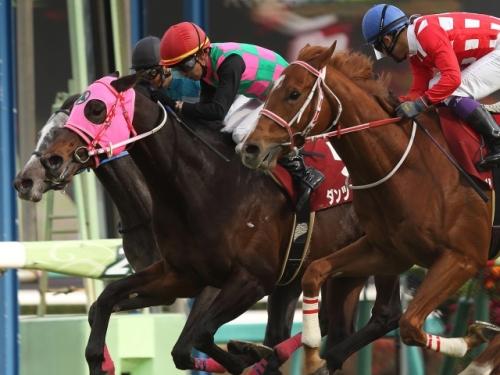 【競馬引退】ダンツプリウス引退 ブライアンズタイム産駒最後のJRA重賞勝ち馬