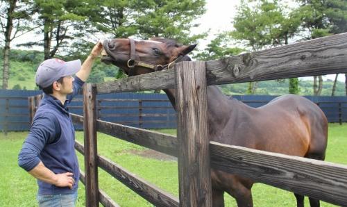 【競馬ネタ】ラニの初年度種付け数118頭 ダービー馬ワンアンドオンリー20頭